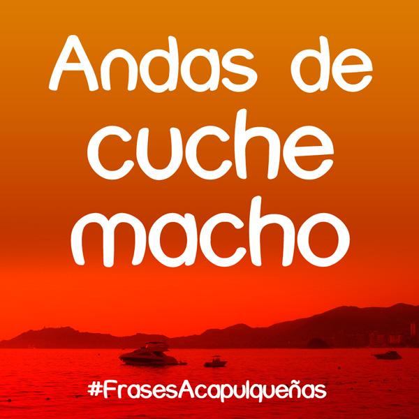 CucheMacho