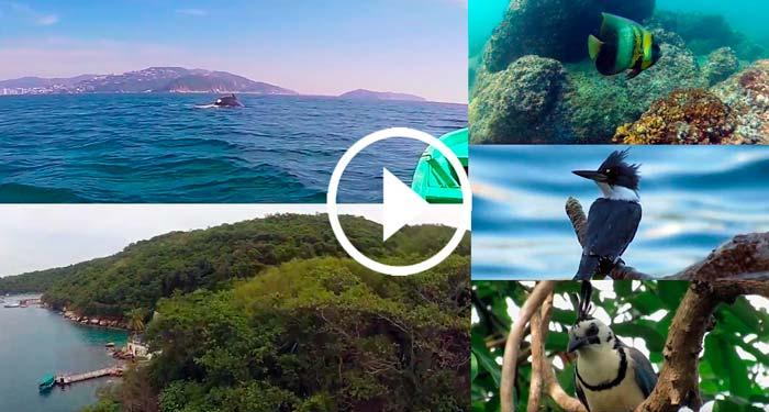 Preparan Documental de la Isla de la Roqueta, nunca antes visto